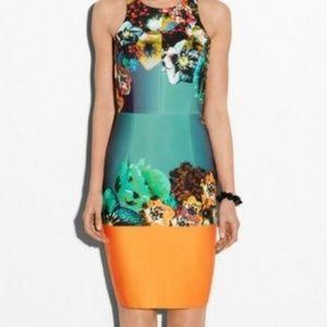 Milly New York womens 2 XS Dress Sea Blossom Scuba